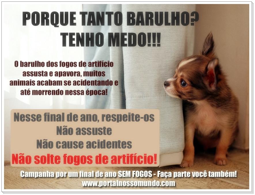 http://www.portalnossomundo.com/blog/wp-content/uploads/2011/12/fogos.jpg